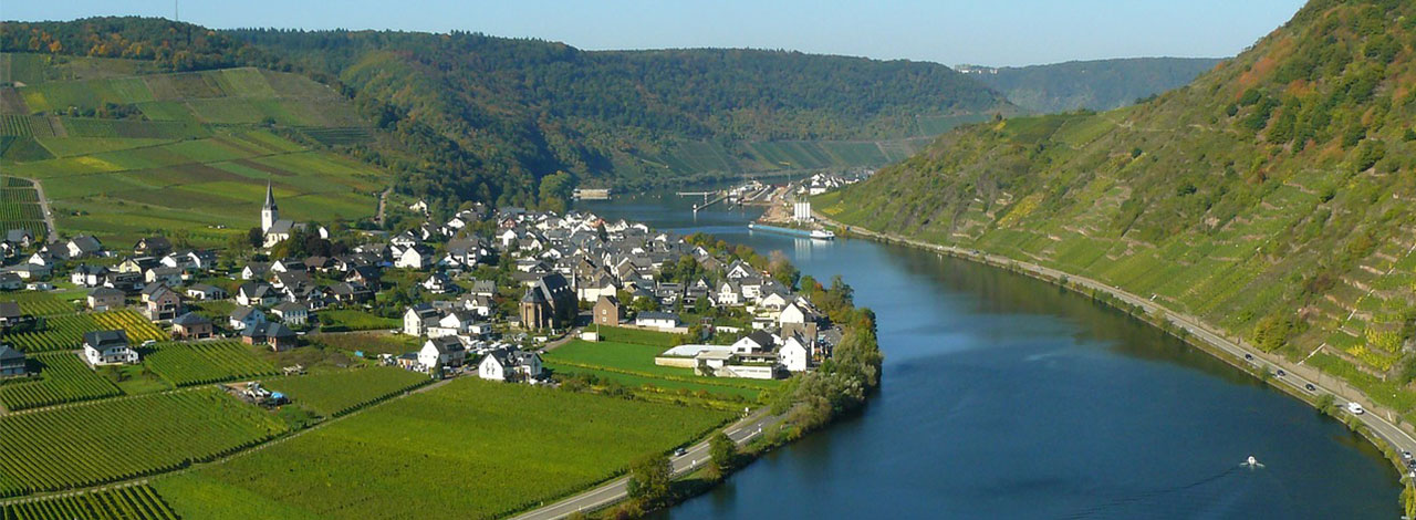 Rhine-Moselle-Escorted-River-Cruise-2020
